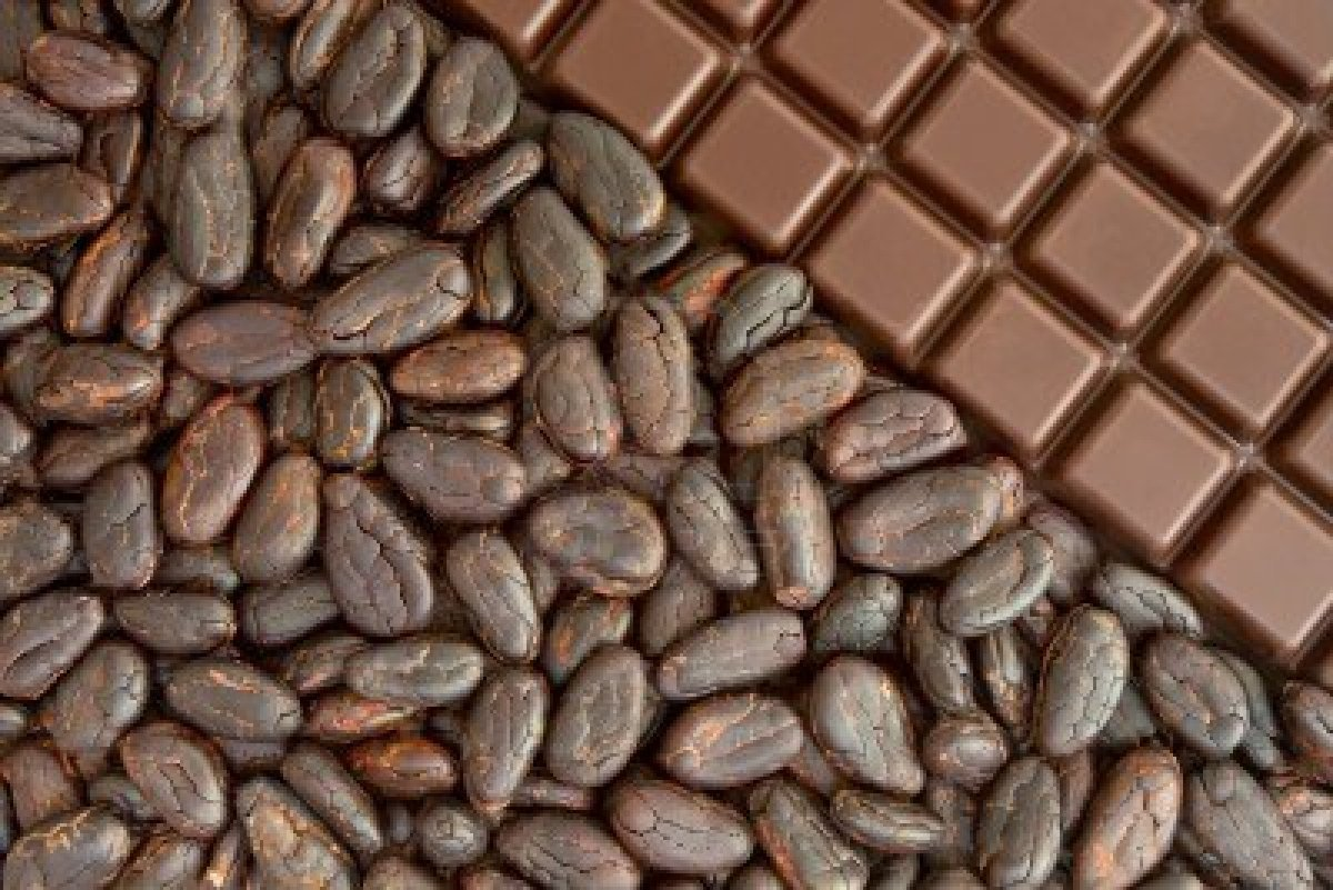 7686329-bar-of-chocolate-and-cocoa-beans